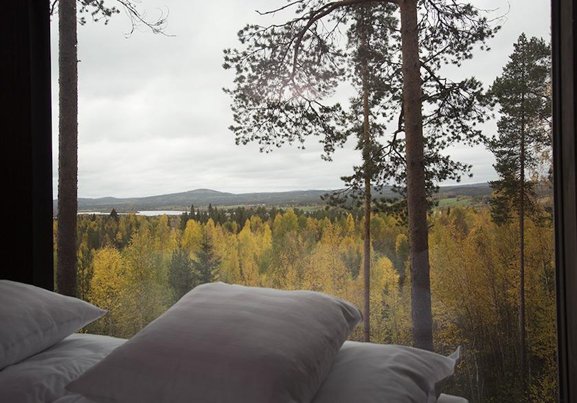 TreeHotel_Kahrs Oak Nouveau Charcoal 6